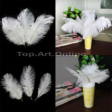 10 Gorgeous Quality Natural White Ostrich Soft Feathers Home Wedding Decorations