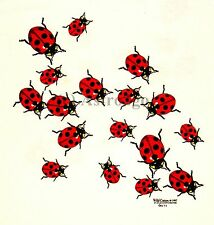 LADYBUGS--Beetles Bugs Insects Science Nature 2 sided Kids T shirt XS (2-4)