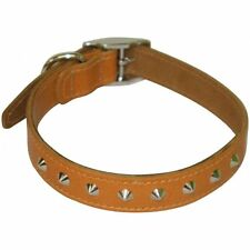 """BBD Pet Products Studded Leather Collar 1/2"""" x 12""""-14"""" 6 Colour Available"""