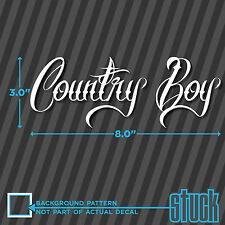 Country Boy - vinyl decal sticker man music cowboy windshield bumper rebel