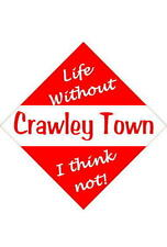 Crawley Town Car/window signs / Personalised signs / flexible magnets