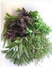 Herbs-8 Kinds-Rosemary,Chamomile,Basil Blends,Peppermint +combined shipping 2014