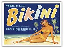 Bikini Brand Produce Girl Vintage Fruit Crate Label Art Poster Print