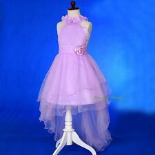 Rosettes Halter Tulle Flower Girl Party Occasion Dress Gown Purple Sz 2-10 FG338