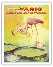 Brazil Pink Flamingo Water Lily Vintage Airline Travel Art Poster Print Giclee