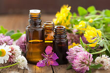 100% PURE & NATURAL ESSENTIAL OILS FROM INDIA ( FREE SHIPPING ) - 15 ML (1/2 OZ)