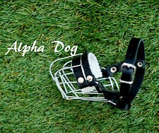 Metal Wire Basket Dog Muzzle for Yorkshire Terrier,Pinscher, Miniature Schnauzer