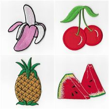 Banana Cherry Pineapple Watermelon Fruit Embroidered Iron on Patches Sewing 040