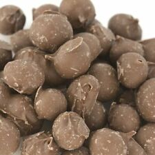 Chocolate Covered Double Dipped Peanuts - Pick a Size! - Free Expedited Shipping