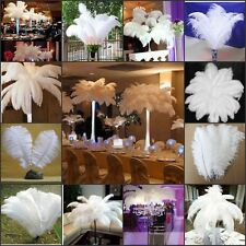 Wholesale quality 10/50/100pcs white Natural ostrich feathers 6-24inch/15-60cm