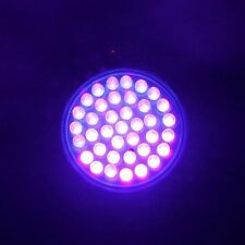 Ultra Bright E27 UV Ultraviolet Color Purple Light 38LED Lamp Bulb 110/220V Good