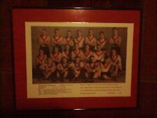 South Melbourne Football Club 1933 VFL Premiers Limited Edition Framed Print