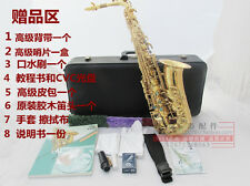 NEW Yanagisawa Gold Alto Sax W01 A901 Copy, Complete Outfit Pro Horn Student $