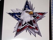 American Flag Eagle Star decal Camper RV motorhome mural graphic Sticker decals