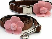 Camellia Collection Small Breed Diva Dog Collar with Matching Leash MADE IN USA