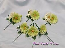 WEDDING FLOWERS LIGHT LIME GERBERA GUEST GROOM BUTTONHOLE LADIES CORSAGE PACKAGE