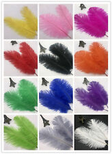 Wholesale 10-100 pcs high-quality natural ostrich feathers 8-10 inch/20-25cm