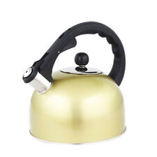 3L Whistling Water Kettle Induction Cooker Thicken Stainless Steel Tea Kettle