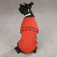 "Zack & Zoey Halloween ""This IS My Costume"" Dog T-Shirt"