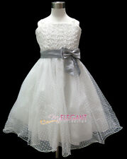 White Gray Rosette Wedding Flower Girls Pageant Party Dress Gown Age 2-13 Years