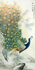 Japanese Peacocks Drawing III  - CANVAS OR PRINT WALL ART