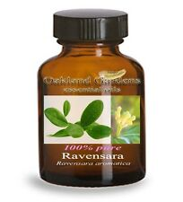 RAVENSARA AROMATICA Essential Oil - 100% PURE Therapeutic Grade - Slightly spicy
