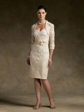 New Stock champagne Lace Mother of the Bride dresses outfit size 6 8 10 12 14 16