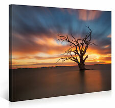 Stretched Canvas Print - WATER ROOTED Large Sunset Scenery Wall Art s3828