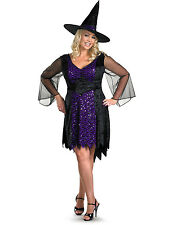 Plus Size Bewitched Sexy Purple Gothic Witch Halloween Costume Womens (18-24)