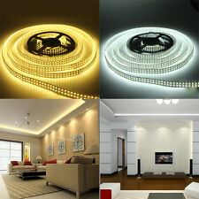 5M Double Row RGB 5050 3528 5630 300 600 1200 LED White Warm Strip Light