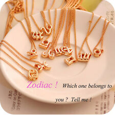 Couples High Quality Alloy Zodiac Horoscope Astrology Clavicle Chain Necklace H4