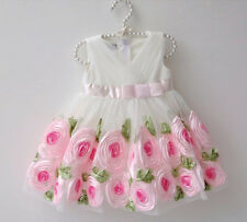 Baby Clothing Baby Party Ball Gown Dress Flower Girl Dress Birthday Dress 12-24M