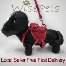 Adjustable Pet Dog Soft Mesh Harness Backpack With Matching Leash Lead Red