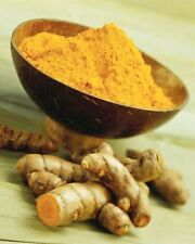 Curcumin powder,Turmeric extract root, Curcuma longa powder
