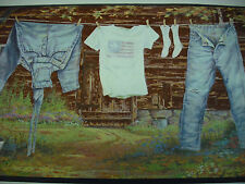 COUNTRY RUSTIC Laundry Room Clothes Line Wallpaper Border