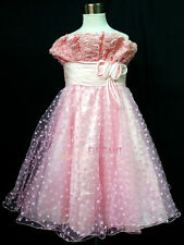 Pink Rosette Children Kids Wedding Flower Girls Gown Pageant Dress 1-13 Years