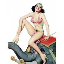 NEW Retro Pin Up Girl Brunette In Harem Outfit Elephant Vintage Poster Wall Art