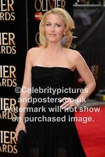 Gillian Anderson , TV & Film Actress. Photo, picture, poster,all sizes