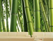 Photo Wall Mural PARADISE OF BAMBOO 400x280 Wallpaper Art Decor Forest Asia Wood