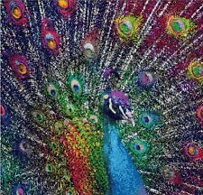 Counted Cross Stitch Pattern or Kit, Animal, Peacock, Birds