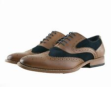 Cavani Mens Weir Gatsby Navy suede with Tan brown Mens Lace Up Formal Brogues