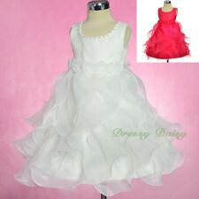 Ruffles Rosettes Flower Girl Dress Birthday Party Occasion Dress Size 1-5 FG325