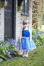 TODDLER GIRLS CHILDRENS BLUE FLOWER FAIRY PRINCESS PARTY DRESS COSTUME AGE 2-8