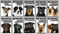 Beware Dog Breed Plastic Signs