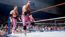 Bret The Hitman Hart - WWE / WWF Wrestling poster print picture photo 032