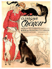 1138 veterinary clinic Art Decoration POSTER.Graphics to decorate home office.