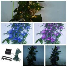 100LED Solar Powered Waterproof Fairy String Lights Indoor/Outdoor Decorations