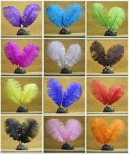 ������Beautiful  Hard Rod Ostrich Feather Plumes Various Colours  ������