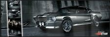 """FORD MUSTANG SHELBY GT500 - EASTON CHANG - FRAMED DOOR POSTER (SIZE: 62"""" X 21"""")"""