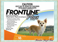 Frontline Plus For Small Dogs Up To 10kg 3 pack 6 pack